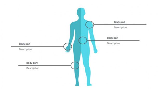 Human-body-diagrams